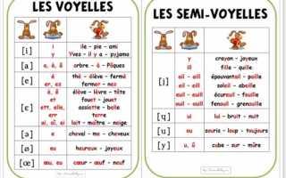 Французские гласные буквы