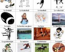 Виды спорта на французском языке