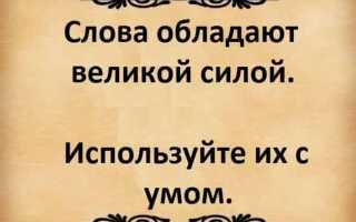Как пишется «не в силах» или «ни в силах»?