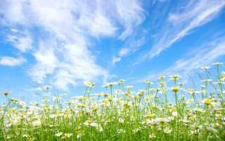 Как правильно пишется «раннюю весну»?
