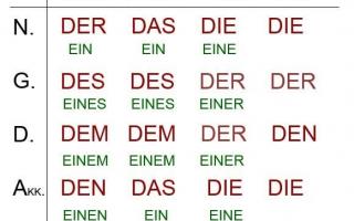 Склонение существительных по падежам в немецком