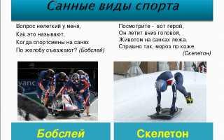 Презентация на немецком языке по теме: «спорт в нашей жизни»