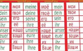Предложения на немецком языке с переводом, фразы, разговорник