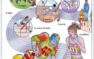 Лексика на тему «спорт» и «футбол» во французском языке