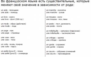 Существительные. категории имен существительных
