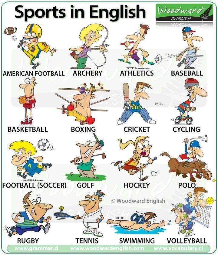 Виды спорта на английском языке – зимние и летние