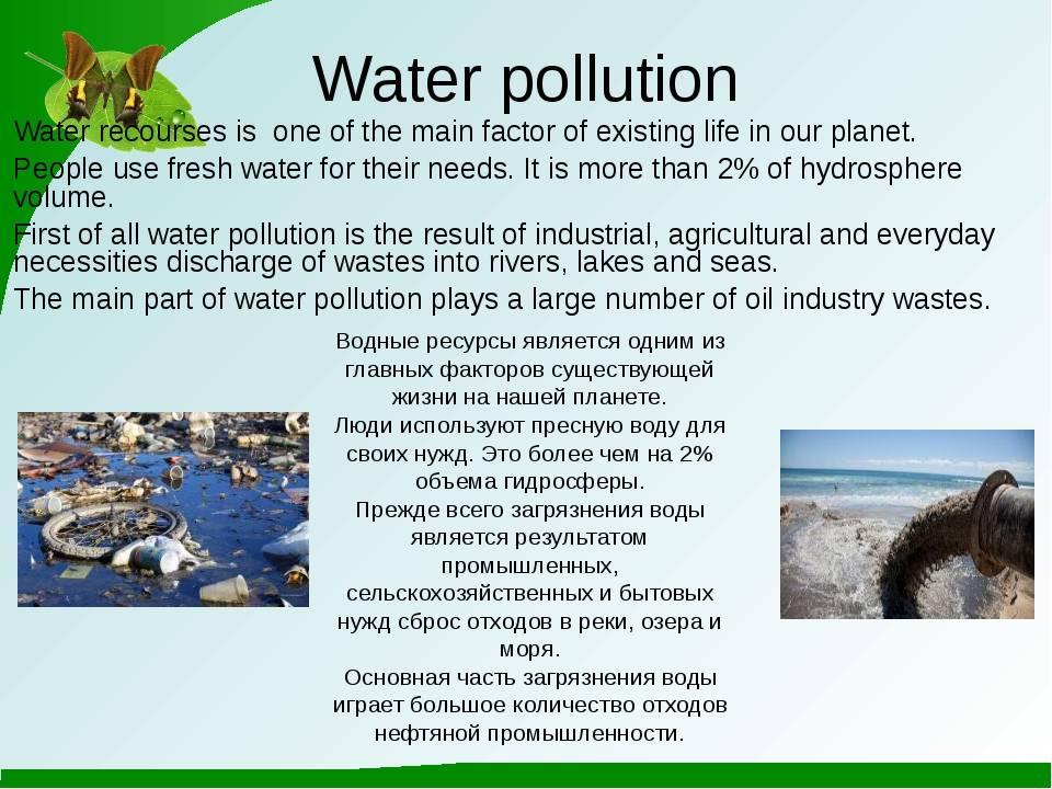 Сочинение на английском языке с переводом экология