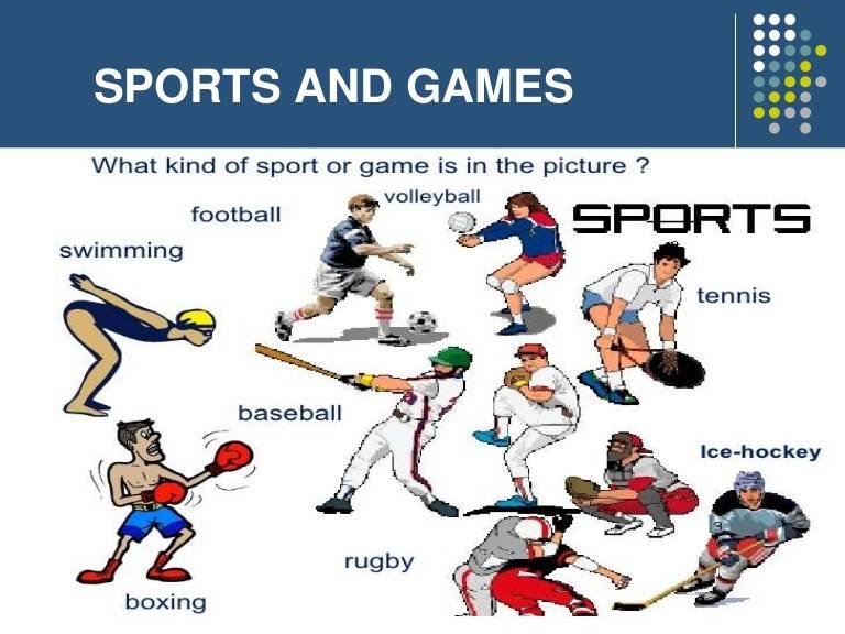 Виды спорта на английском языке - зимние и летние