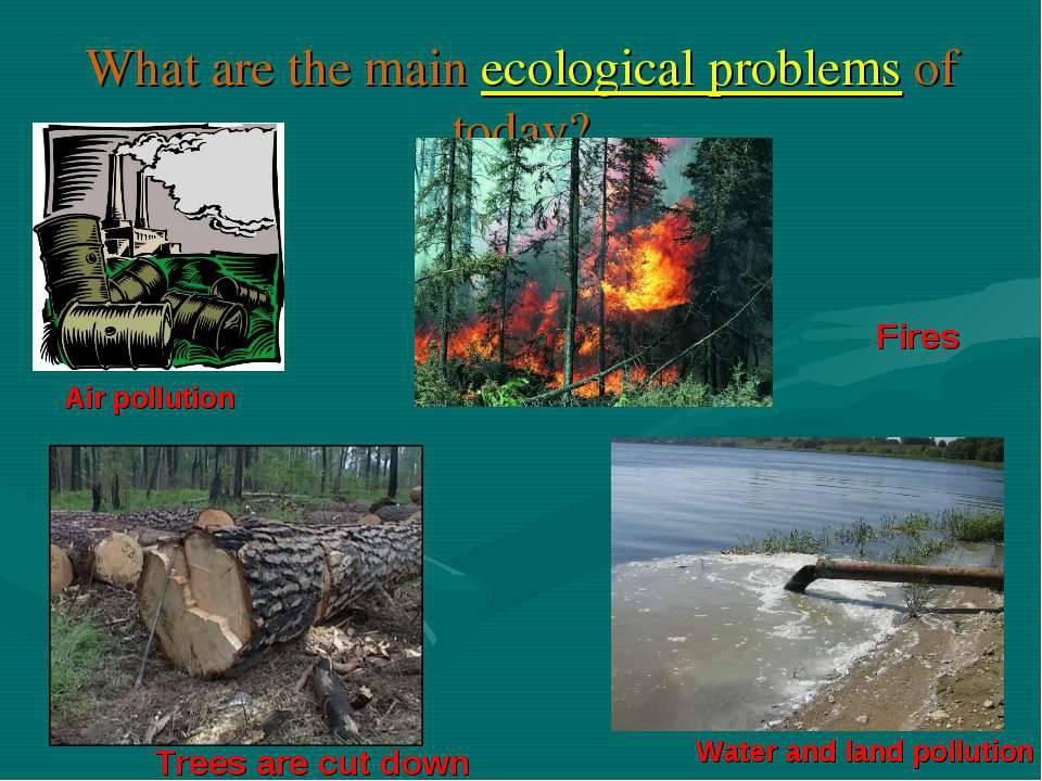 Реферат на английском языке на тему: экологические проблемы/ ecological problems с переводом на русский