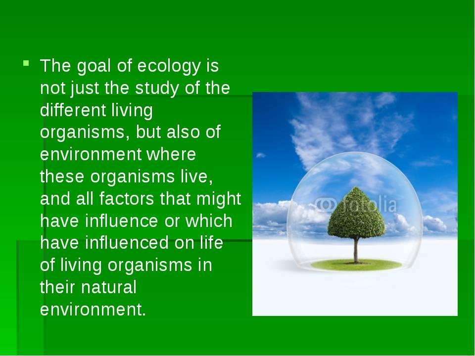 Экологические проблемы на английском языке - текст с переводом